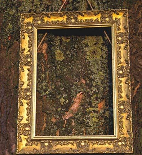 BREITER aufwendig gearbeiteter Shabby Chic Antik- Bilderrahmen in Gold/Muse Bild- / Foto- / Posterrahmen - Mit einem bruchsicheren Plexiglas aus Styrol für hohe Klarheit - Gold - A2