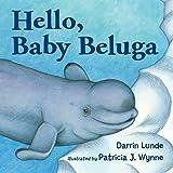 Hello, Baby Beluga