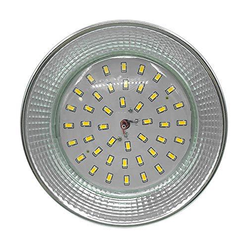 Luz LED de la planta, luz de relleno de Pitaya de espectro completo, luz de crecimiento de la planta de iluminación, luz suculenta impermeable de la planta de invernadero