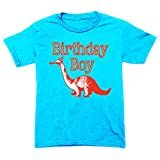 Happy Family Clothing Little Boys' Dinosaur Birthday Boy T-Shirt (4 T, Aqua Blue)