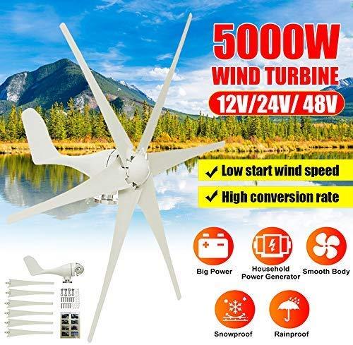 LWQ 5000W Windgenerator, 12V / 24V / 48V 6 Blatt-Schwarz-Windkraftanlagen Horizontale Startseite Powers Windmühle Energieanlagen Lade,Weiß,48V
