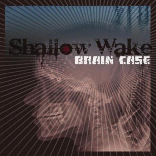 Shallow Wake