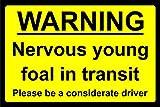 Señal de Advertencia con Texto en inglés Nervioso Joven Potro en tránsito, señal magnética de Seguridad de 1 mm, 400 mm x 300 mm
