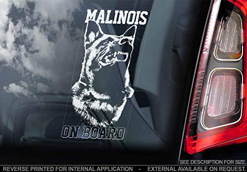 Belgische Malinois - Autoaufkleber - Hund Schild Fenster, Stoßstange Aufkleber Geschenk - V003 - Weiß/Klar - Interne Rückwärtsgang Aufdruck, 215x100mm