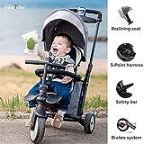 Zoom IMG-2 smartrike str5 triciclo con certificazione