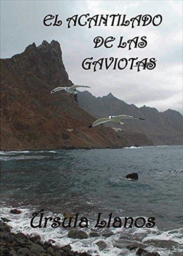 El acantilado de las gaviotas