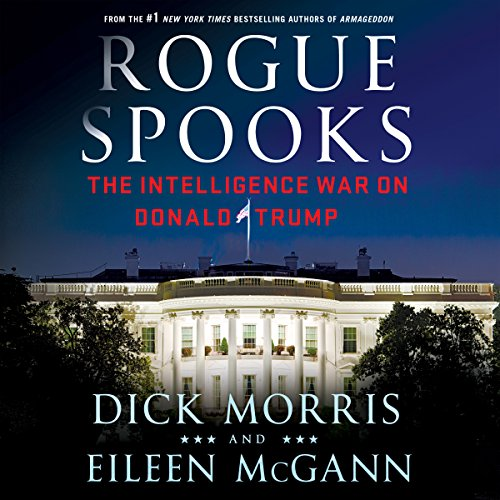 Rogue Spooks audiobook cover art