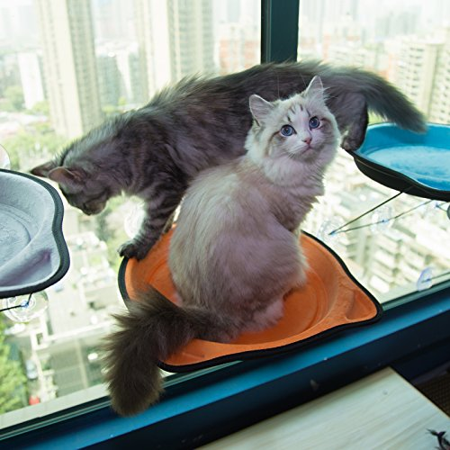 D.Jane Cat Window Bed Hammock Window Mounted Cat Perch Sunny Seat for Small Indoor Cat up to 28 lb with Suction Cups Orange