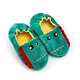 Drecage Zapatillas de Estar por Casa para Niños Niñas Invierno Otoño Slippers Interior Casa Caliente Pantuflas cálidos para Exteriores 8-9 UK Child 24-25 EU Label Size 15-16