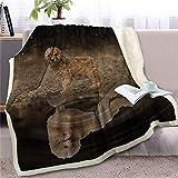 SELLA Manta en Camas Manta de Tiro Animal para niños Colcha de Reflejo de Perro Colcha de sofá de Cachorro de Bulldog francés 3D, Weimaraner, 130cmx150cm
