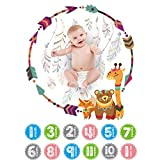 ckground Baby Mensual Milestone Blanket Photography Backdrop Photo Prop con...