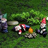 Garden Gnome Statue, Naughty Garden Gnome, Funny Resin Peeing Gnome Dwarf Naked Goblin for Patio Yard Lawn Ornaments Indoor Outdoor Home Garden Decorations Crafts (Garden Gnome, 3)