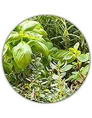 Italiaans kruidenpakket met 6 kruiden/oregano, basilicum, peterselie, tijm, rozemarijn, marjolein / 300 zaden/Ideaal voor de vensterbank/je eigen kruidentuin/kruidenpotten/zelfverzorging