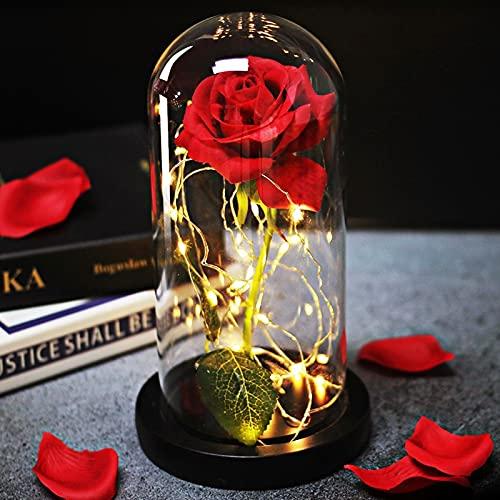 opamoo Rose Eternelle sous Cloche, La Belle et la Bête Rose Enchantée, avec Élégante Dôme en Verre et Base en Pin Lumières LED pour la Décoration Intérieure, Anniversaire, Mariage, Saint-Valentin