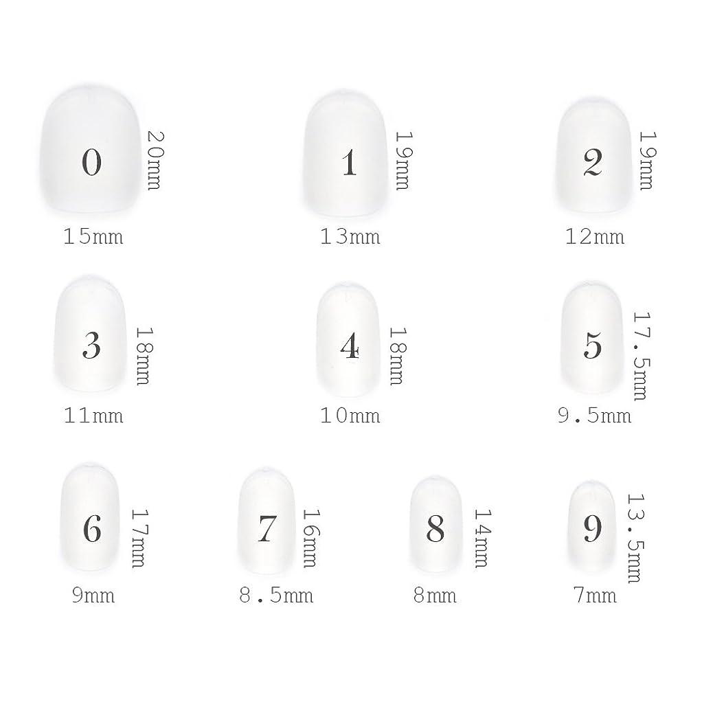 根拠脅迫禁止するショートラウンド型 クリアネイルチップ サンディング加工なし 透明 500枚入り 10サイズ各50枚