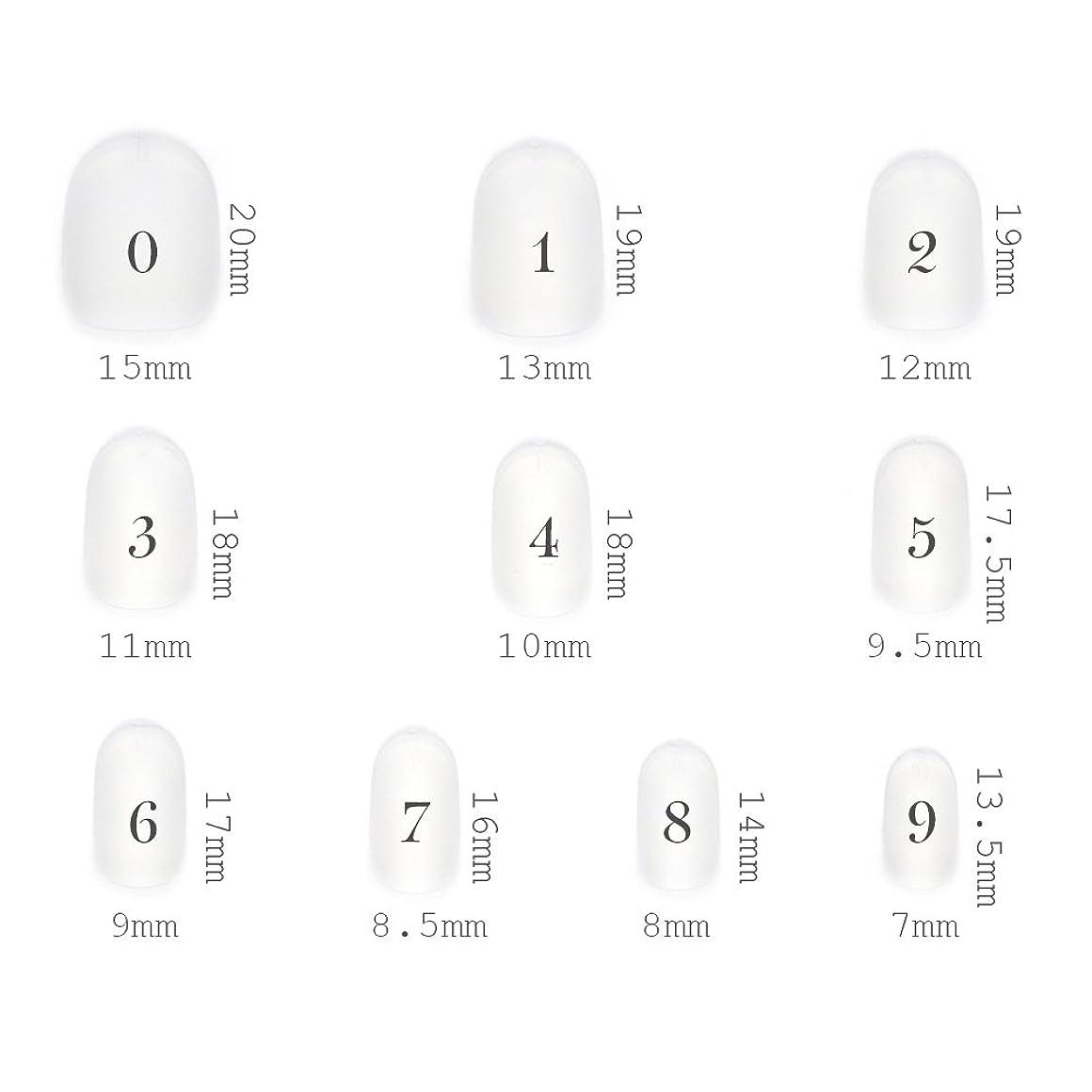 上流の小屋二度ショートラウンド型 クリアネイルチップ サンディング加工なし 透明 500枚入り 10サイズ各50枚