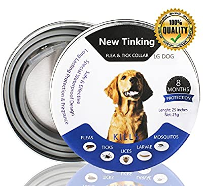 CRAZYBOY Flea and Tick Collar for Dogs, Waterproof Dog Anti Flea Collar, Natural & Safe from CRAZYBOY
