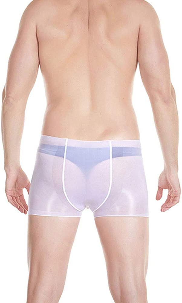 Sexy Men Sheer Silk Stockings Boxers Briefs See Through Oil Shiny Pouch Panties Lingerie Underwear Erotic Underpants