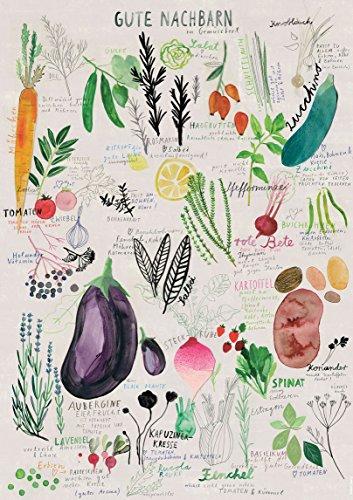 Kunstdruck Poster  Gute Nachbarn   A3 und 50 x 70 cm (ungerahmt)   Garten, Illustration, Grafik