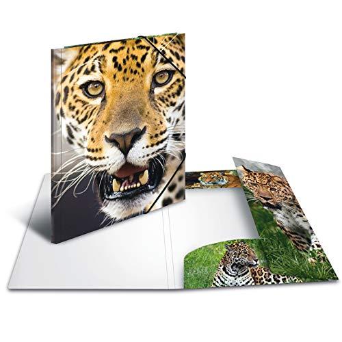 HERMA 7137Sammelmappe DIN A4, in plastica, serie Animali, motivo leopardato, con con elastici in gomma, 1pezzi