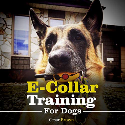 E-Collar Training for Your Dog cover art