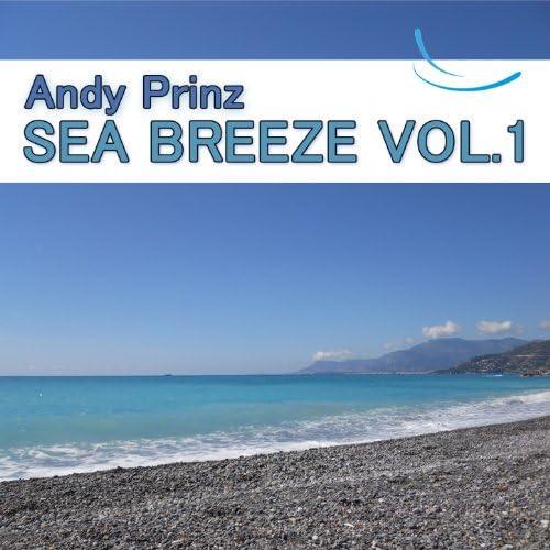 Andy Prinz