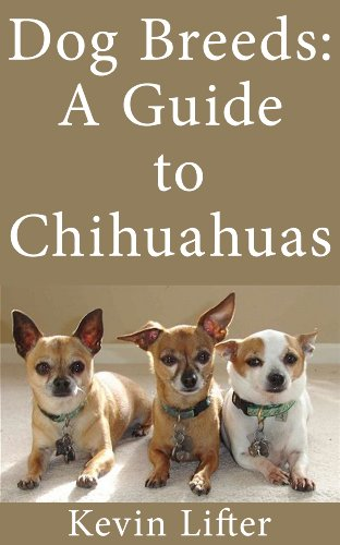 Dog Breeds: A Guide to Chihuahuas and What to Know Before Adopting One
