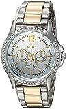 XOXO Women's Analog-Quartz Watch with Alloy Strap, Two Tone, 19 (Model: XO192)