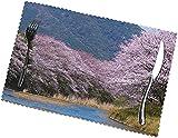 Juego de 4 manteles Individuales de jardín de Japón para 12 x 18 Pulgadas, manteles Individuales Lavables Resistentes al Calor, manteles Individuales Antideslizantes de poliéster