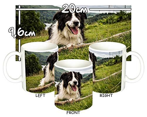 MasTazas Border Collie A Tasse Mug