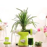 Gesunde Entsafter Obst und Gemüse Hand-Manual Weizengras Entsafter Küche oder Esszimmer Hand Crank...