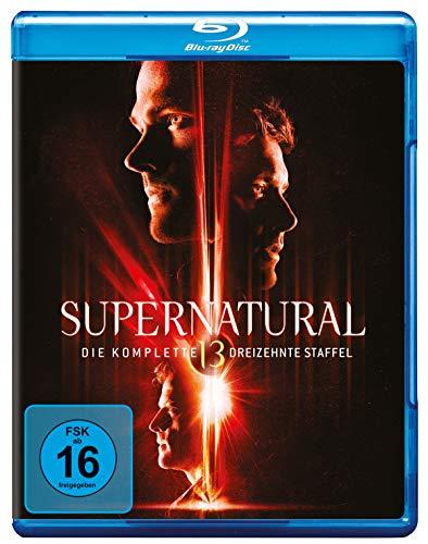 Staffel 13 [Blu-ray]