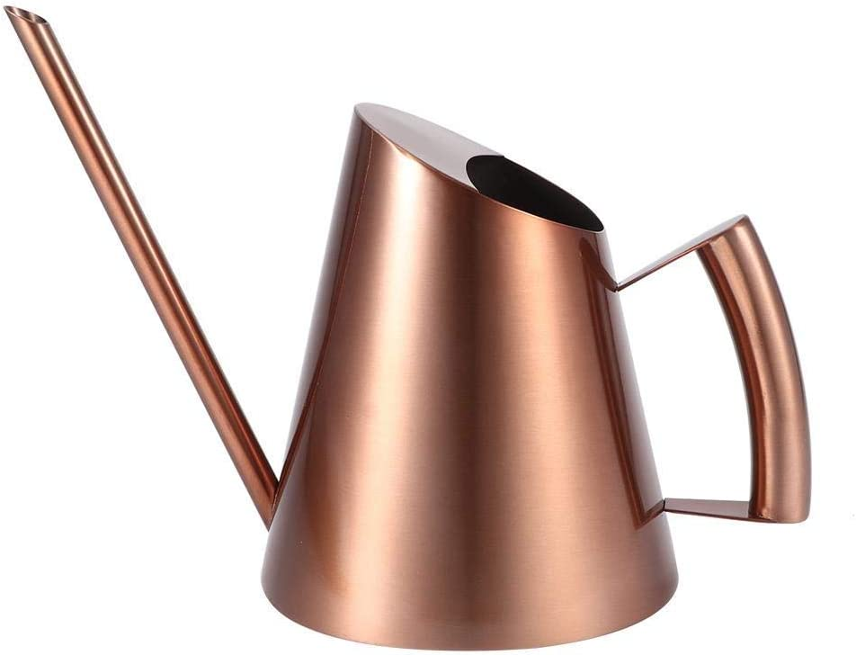 AUNMAS Indoor excellence Watering Can with Long Straight S Stainless Selling Spout
