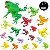 OOTSR 19 Pezzi Rana in plastica Giocattoli Set Figure realistiche assortite Giocattoli realistici Realizzati in plastica Premium per Bambini Congnizione Insetti educativi a Tema Bomboniere Compleanni
