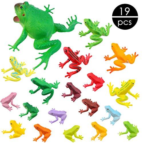 OOTSR 19 Stück Kunststoff Frosch Figuren Spielzeug Set Verschiedene Realistische Frosch Spielzeug Aus Kunststoff für Kinder Congnition Pädagogisches Insekt Themen Party Geburtstag Gefälligkeiten