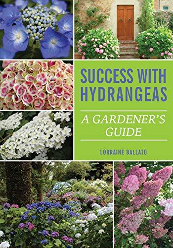 Success With Hydrangeas: A Gardener's Guide