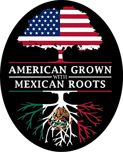 2 pcs American Grown with Mexican Roots, 3 inches | Mexican American Stickers para Carro Mexican Pride Pegatinas Calcomanías Mexico for Laptop, Car Bumper, Water Bottle, Window, Hard Hat