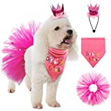 SCENEREAL Dog Birthday Bandana Girl - Birthday Party Supplies -Tutu Skirt,Hat & Scarf Set for Pet Puppy Cat Girl,Pink Outfit for Birthday Party