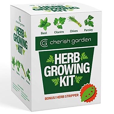Cherish Garden DIY Herb Growing Kit | Plant Starter Set | 4 x Seed Packets | Basil, Cilantro, Parsley & Chives | With Complete Guide & BONUS Herb Stripper | Herb Garden Kit
