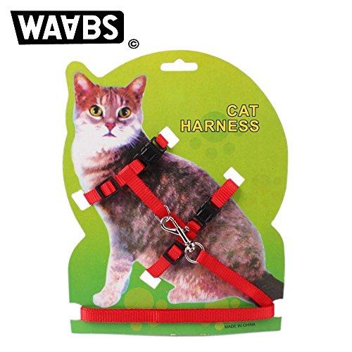 Waabs Katzengeschirr, verstellbares Halsband aus Nylon mit gratis Katzenleine