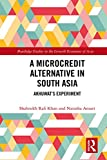 A Microcredit Alternative in South Asia: Akhuwat's Experiment (Routledge Studies in the Growth Economies of Asia) (English Edition)