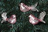 3 tlg. Glas Vogel Set in 'Ice Rosa Silber' - Christbaumkugeln - Weihnachtsschmuck-Christbaumschmuck