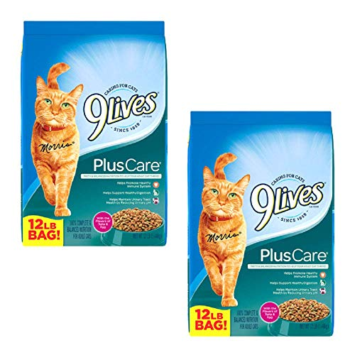 9Lives Plus Care Dry Cat Food