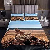 Afrika-Geparden-Steppdecken-Set für Kinder, Jungen, Mädchen, Leoparden-Tagesdecke, Wildtier-Bettwäsche-Set, modern, modisch, dekorativ, 2-teiliges Bettwäsche-Set mit 1 Kissenbezug, Einzelbettgröße