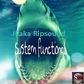 System Functional