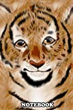 Notebook: Tony The Tiger , Journal for Writing, College Ruled Size 6' x 9', 110 Pages