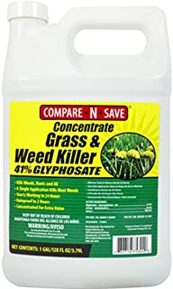 Compare-N-Save Concentrate Grass and Weed Killer,...
