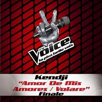 Amor De Mis Amores / Volare - The Voice 3