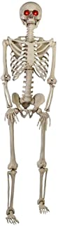 5 ft. Poseable Skeleton with LED Illumination