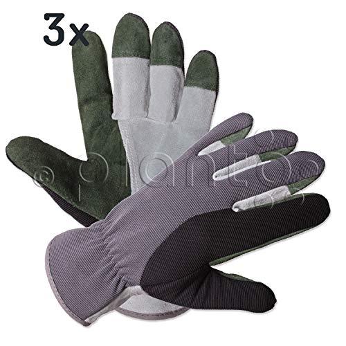 planto Leder-Gartenhandschuhe Flex, Gr. 10, Profi Arbeitshandschuhe aus bestem Rindsleder, Thornproof Gloves (3 Paar)